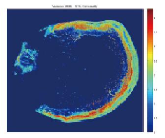 東沙環礁棲地遙測變遷